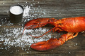 Cooked lobster with coarse salt on wood - PhotoDune Item for Sale