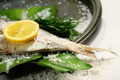 Fish tale with lemon, salt and herbs - PhotoDune Item for Sale