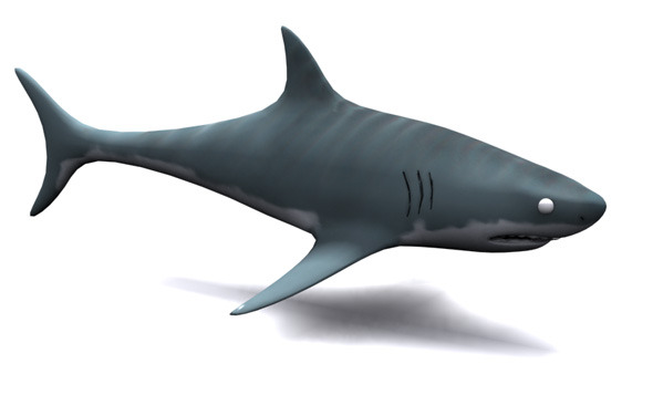 3DOcean Low Poly Shark 10965500