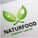 Naturfood Logo - GraphicRiver Item for Sale