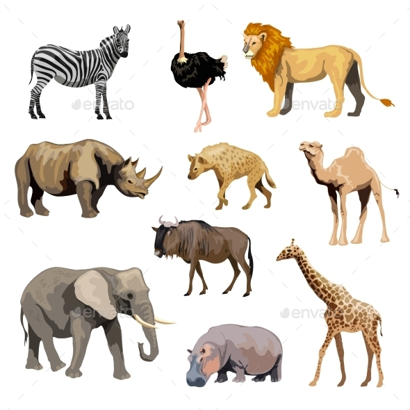 GraphicRiver Wild African Animals Set 10968609