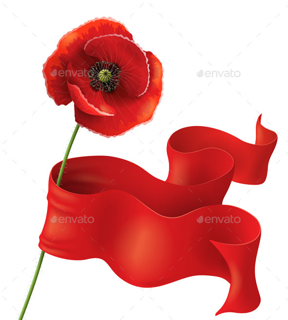GraphicRiver Red Poppy Flower 10968615