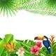 Tropical Landscape Background - GraphicRiver Item for Sale