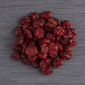 Circle of dried cranberries - PhotoDune Item for Sale