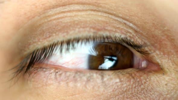 Close-Up Of Eye Looking Around 1