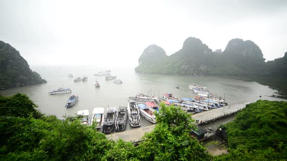 Tourist Boats Dock At Island Bay Ha Long Bay Vietnam 1