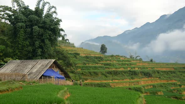 Farm House Surrounded By Rice Terraces In Valley Sapa Vietnam 2