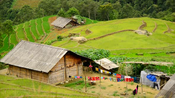 Farm House Surrounded By Rice Terraces In Valley Sapa Vietnam 4