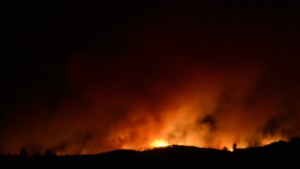 Large Forest Fire At Night 15