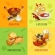 World Food Set - GraphicRiver Item for Sale