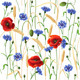 Cornflowers, Poppies and Wheat Ears Pattern - GraphicRiver Item for Sale
