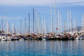 Boats and yachts at sea port in Bodrum - PhotoDune Item for Sale