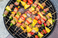 Close up bbq on a grilling pan, View top - PhotoDune Item for Sale