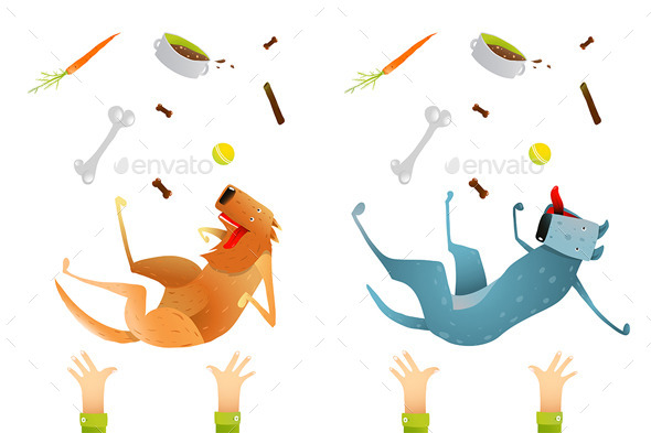 GraphicRiver Looking After Dog Healthy Diet 10984484