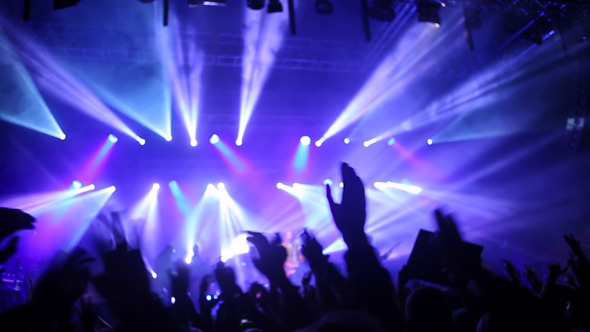VideoHive Crowd of People At Open Air Rock Festival 10989490