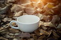 Blank white coffee cup on dry leaves. - PhotoDune Item for Sale