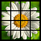Photo Puzzle Game with AdMob