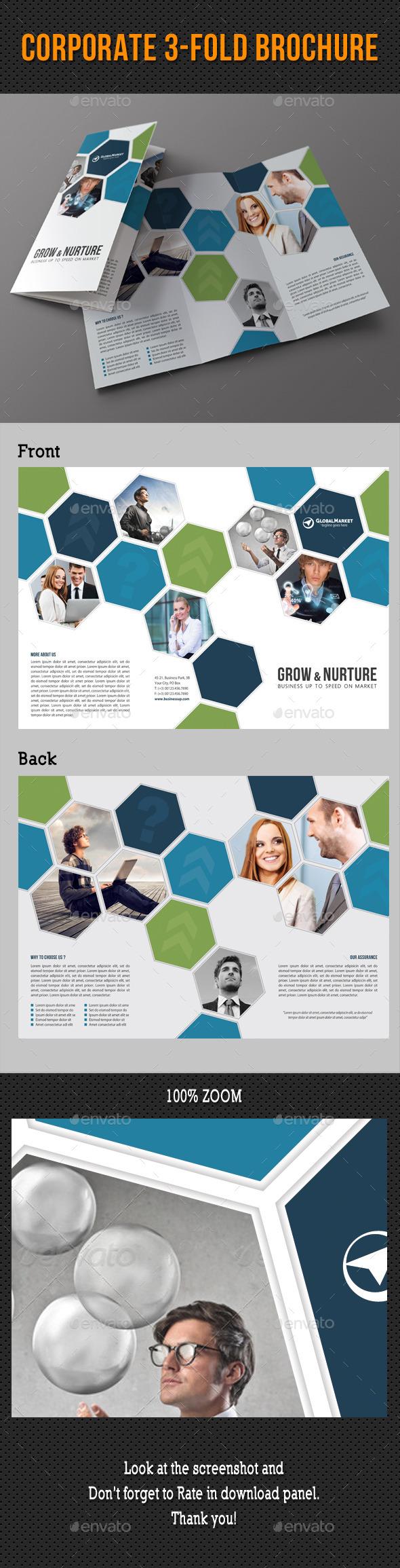 GraphicRiver Corporate 3-Fold Brochure 31 10941974