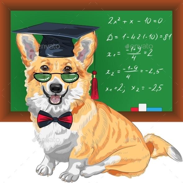 GraphicRiver Graduated Dog Pembroke Welsh Corgi 10995035
