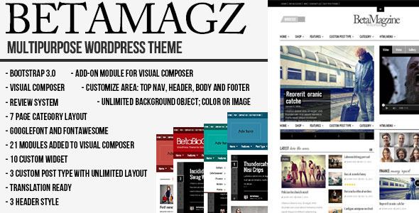 ThemeForest Betamagz Multipurpose Theme For WP Magazine 10796227