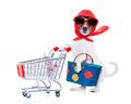 shopping dog diva - PhotoDune Item for Sale