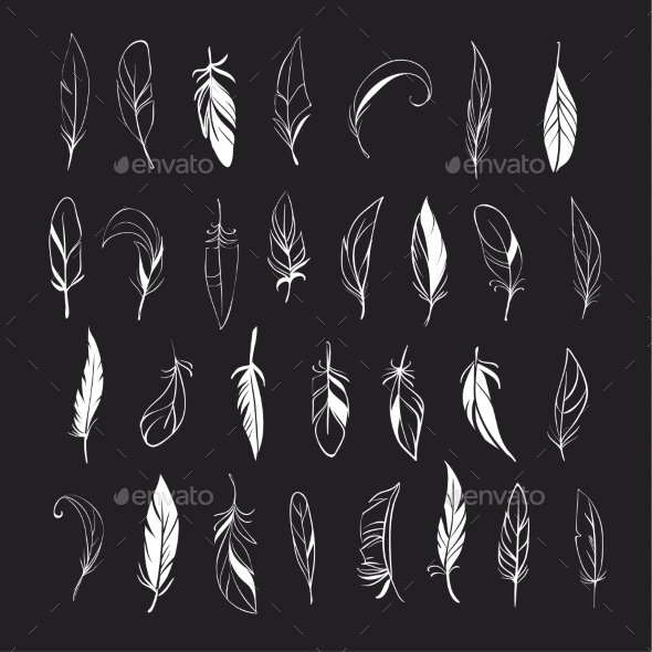 GraphicRiver Feathers 10996570