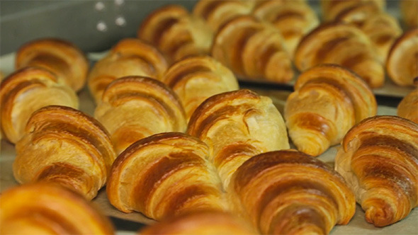 Baking French Croissants