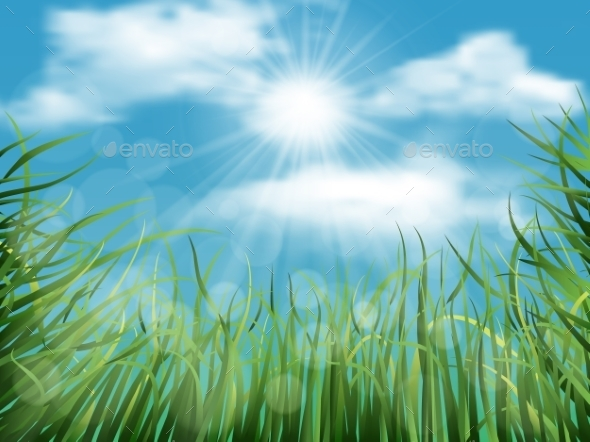 GraphicRiver Background with Grass and Sky 10997519