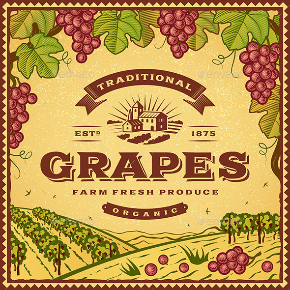 GraphicRiver Vintage Grapes Label 10997748