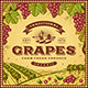 Vintage Grapes Label - GraphicRiver Item for Sale