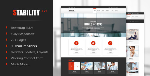 Stability - Responsive HTML5/CSS3 Template - Business Corporate