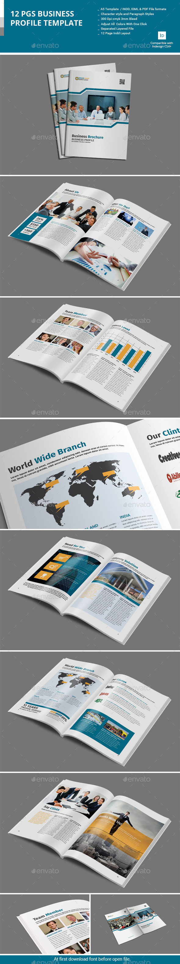 GraphicRiver 12 Pages Business Profile Template 10998830