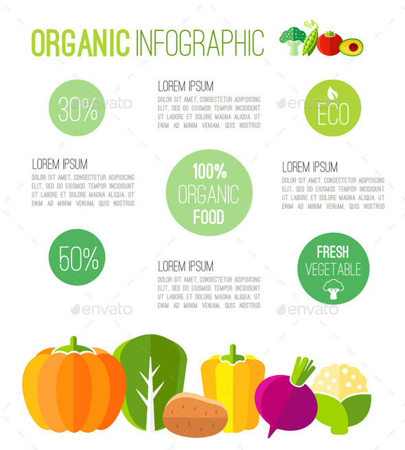 GraphicRiver Organic Infographic Fresh Vegetables Illustration 11003130