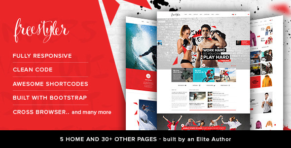 ThemeForest FreeStyler Retina Parallax Responsive Template 11004002