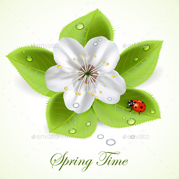 GraphicRiver Flower with Ladybug 11005818