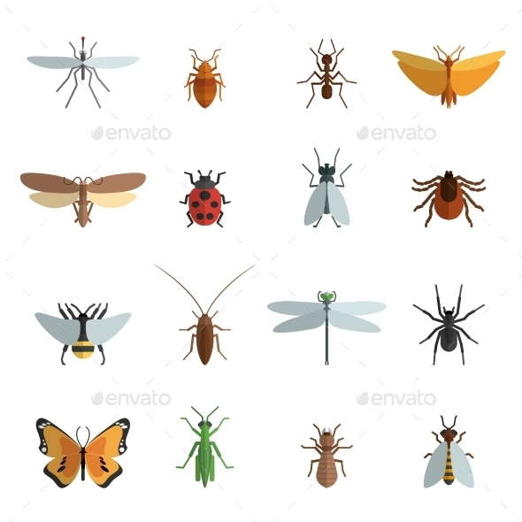 GraphicRiver Insect Icon Flat 11007216