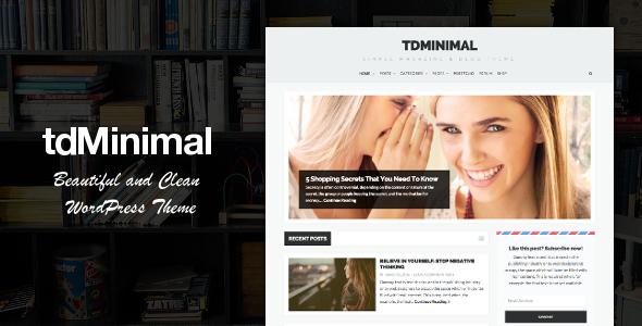 tdMinimal - Responsive WordPress Theme