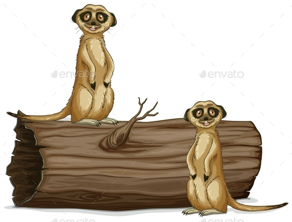 GraphicRiver Meerkats 11010591