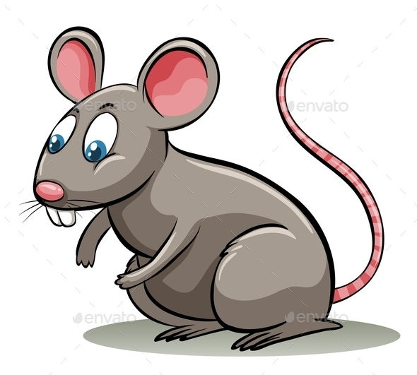 GraphicRiver Mouse 11011773