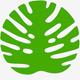 Orchestral logo 4