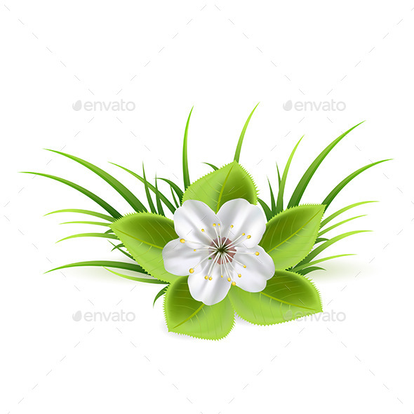 GraphicRiver Flower and Grass 11015942