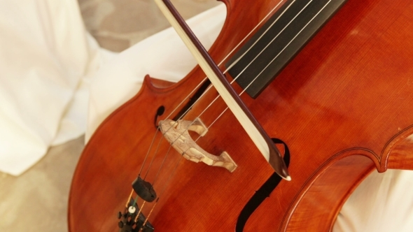 VideoHive Cello 11016749