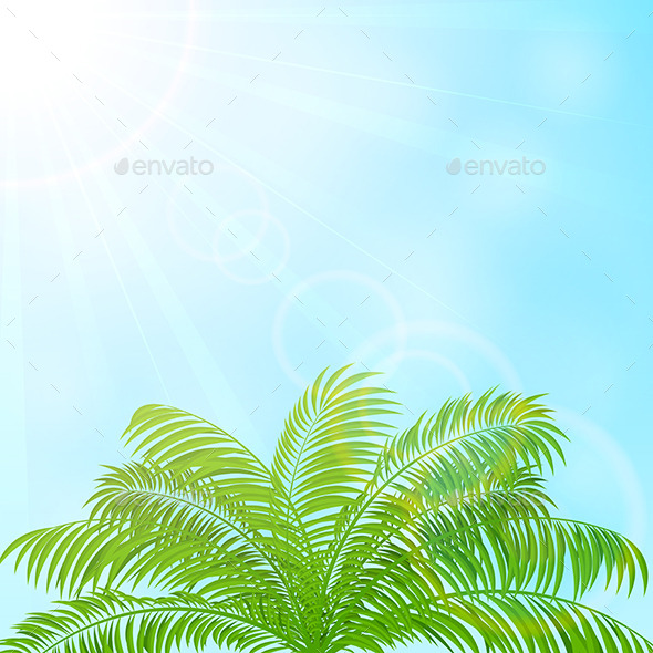 GraphicRiver Palm Tree on Blue Sky Background 11017590