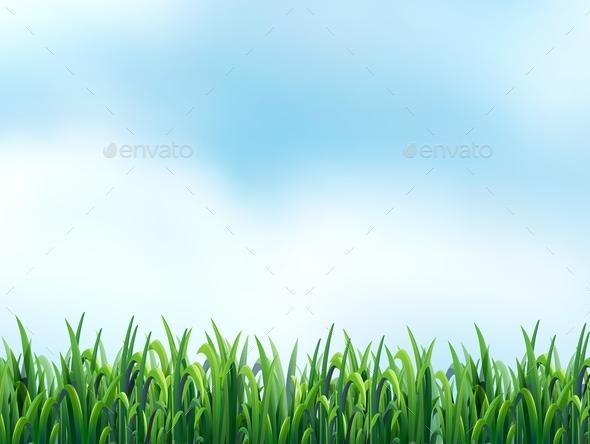 GraphicRiver Grass 11020917
