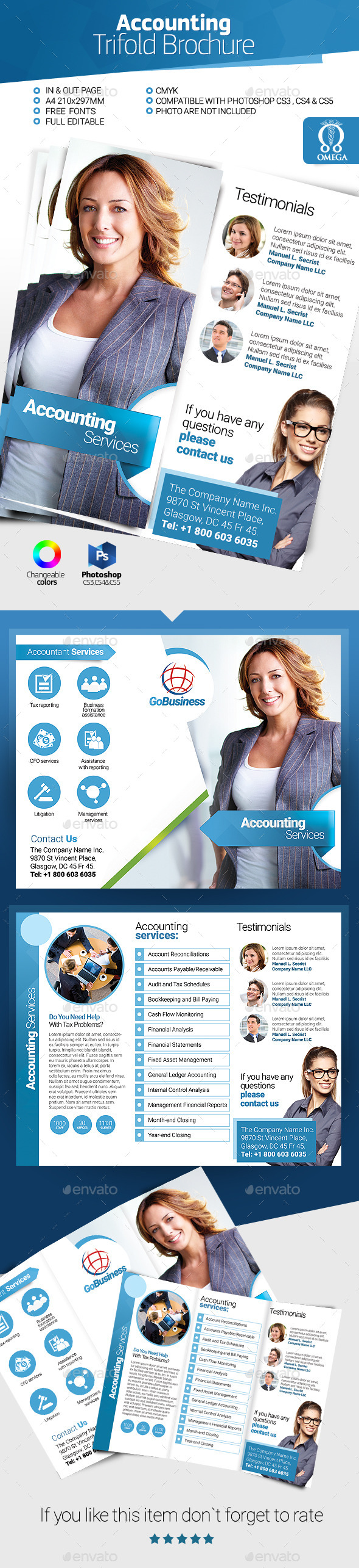 GraphicRiver Accountant Trifold Brochure 11021598