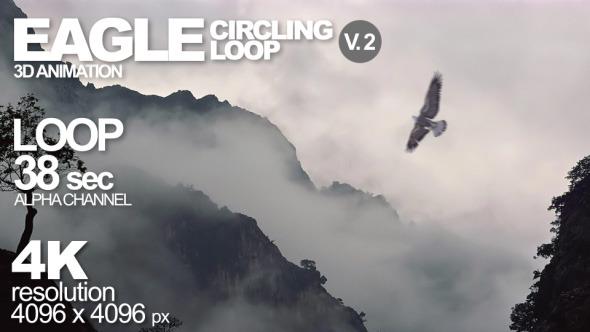 Eagle Loop Circling At Camera