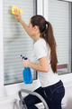 Young Woman Cleaning Windows Glass - PhotoDune Item for Sale