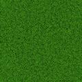 Soccer grass field - PhotoDune Item for Sale