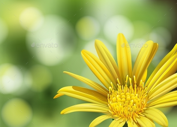 GraphicRiver A Blooming Flower 11026280