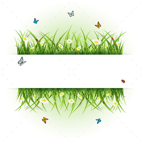 GraphicRiver Background with Butterflies and Ladybugs 11027834